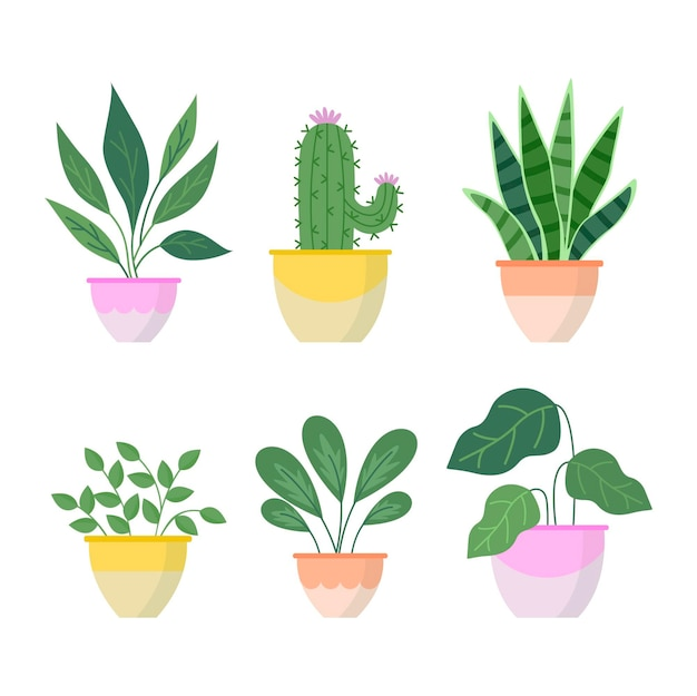 フラットデザインの観葉植物のコレクション