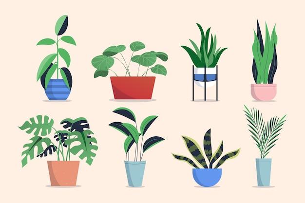 Коллекция комнатных растений плоский дизайн