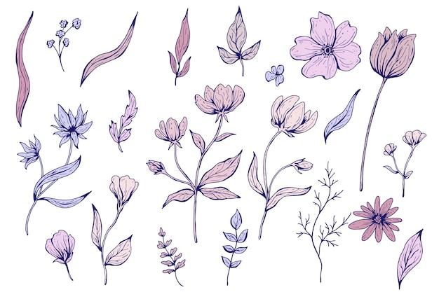 花、葉、植物のコレクション。手描きイラスト。