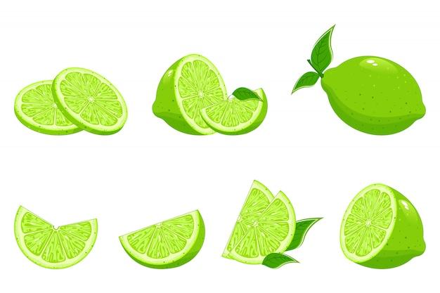 Коллекция свежих лаймов. предназначен для логотипов и веб-сайтов. лимон с кусочками зеленого лимона. свежие лаймы с листьями.