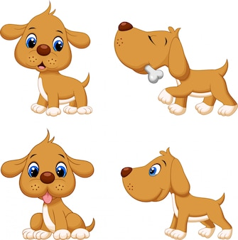 Коллекция забавного коричневого пса Premium векторы