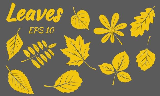 Сбор зеленых листьев. листья разной формы. резные листья. силуэт. векторный набор для дизайна и украшения.
