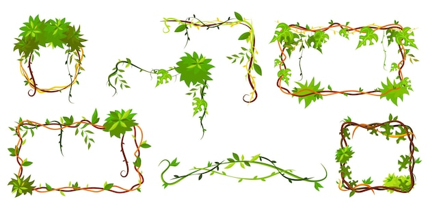 緑のトロピカルフレームのコレクション。漫画のフレーム形のつる植物、葉とジャングル植物の枝