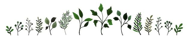 緑のコレクションは、枝の小枝の植物相を残します。花の水彩画の結婚式のオブジェクト、植物の葉。招待カードのベクトルエレガントなハーブの春のイラスト