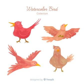 Коллекция рисованной осенних птиц Бесплатные векторы