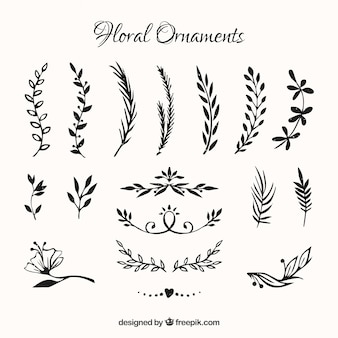 Collection of hand drawn flowers ornament