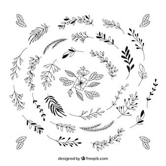손으로 그린 장식 나뭇잎의 컬렉션
