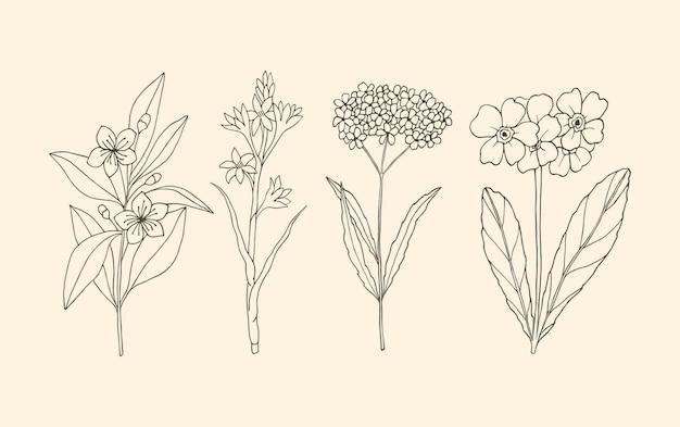 손으로 그린 식물의 수집