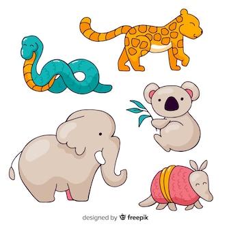 손으로 그린 열 대 동물의 컬렉션