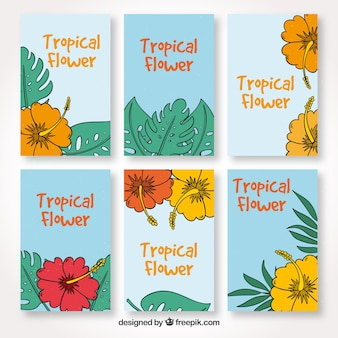 Collection of hand drawn tropical flower cards