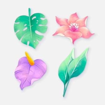 손으로 그린 열 대 꽃과 나뭇잎의 컬렉션