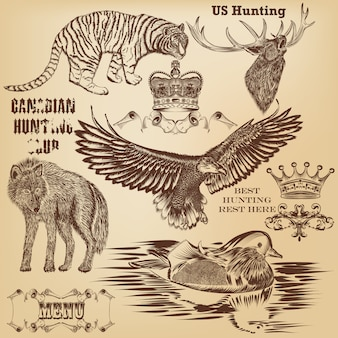 Collection of hand drawn wild animals