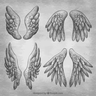 現実的なデザインの手描き翼のコレクション