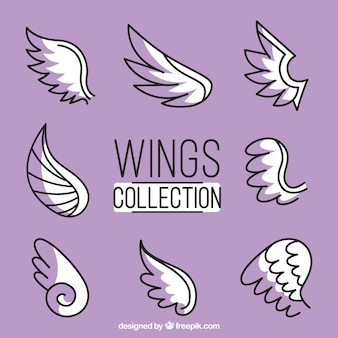 Collection of hand-drawn wings