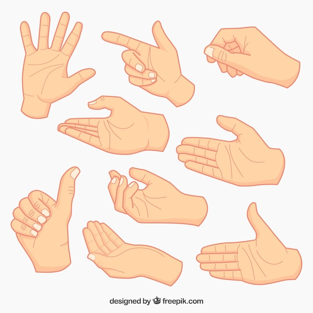 hands vectors photos and psd files free download rh freepik com hand vector free download hand vector freepik