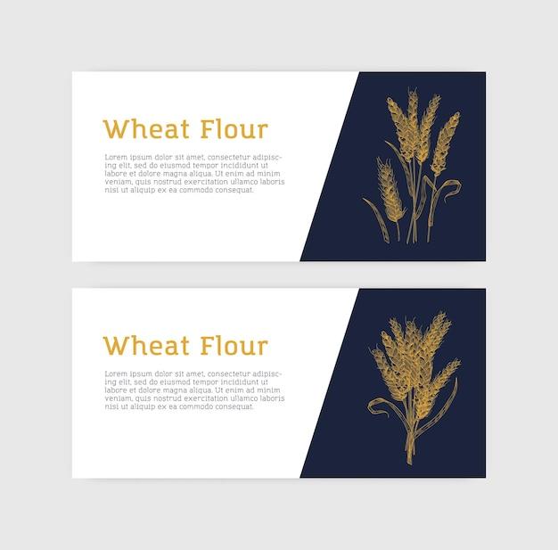 小麦の穂または小穂を持つ水平バナーテンプレートのコレクション。栽培植物、穀物または食用作物。小麦粉のモノクロベクトルイラスト、ベーキング用製品のプロモーション。