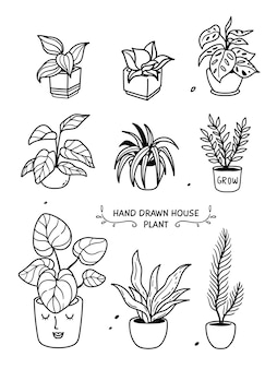 白で隔離される鉢植えの観葉植物のコレクション