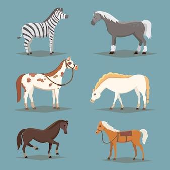 孤立した馬のコレクション。かわいい漫画の馬の家畜。異なるパン