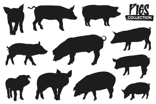 孤立した豚のシルエットのコレクション。グラフィックリソース。