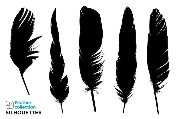 鳥の羽の孤立したシルエットのコレクション。
