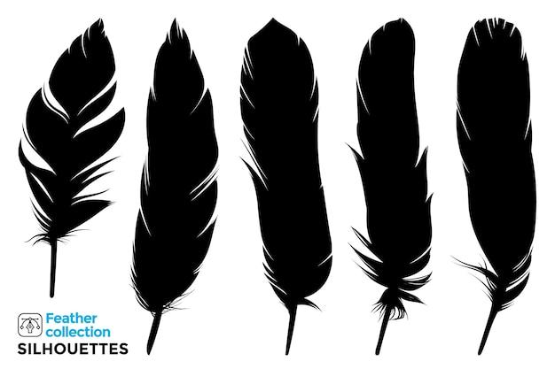 Коллекция изолированных силуэтов перьев птиц.