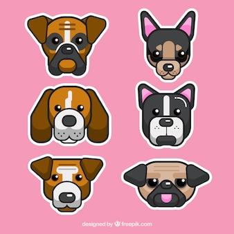 평면 디자인에 사랑스러운 강아지의 컬렉션