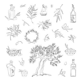 Коллекция монохромных иллюстраций с оливками в стиле эскиза