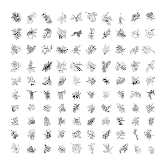 Коллекция монохромных иллюстраций с веточками в стиле эскиза
