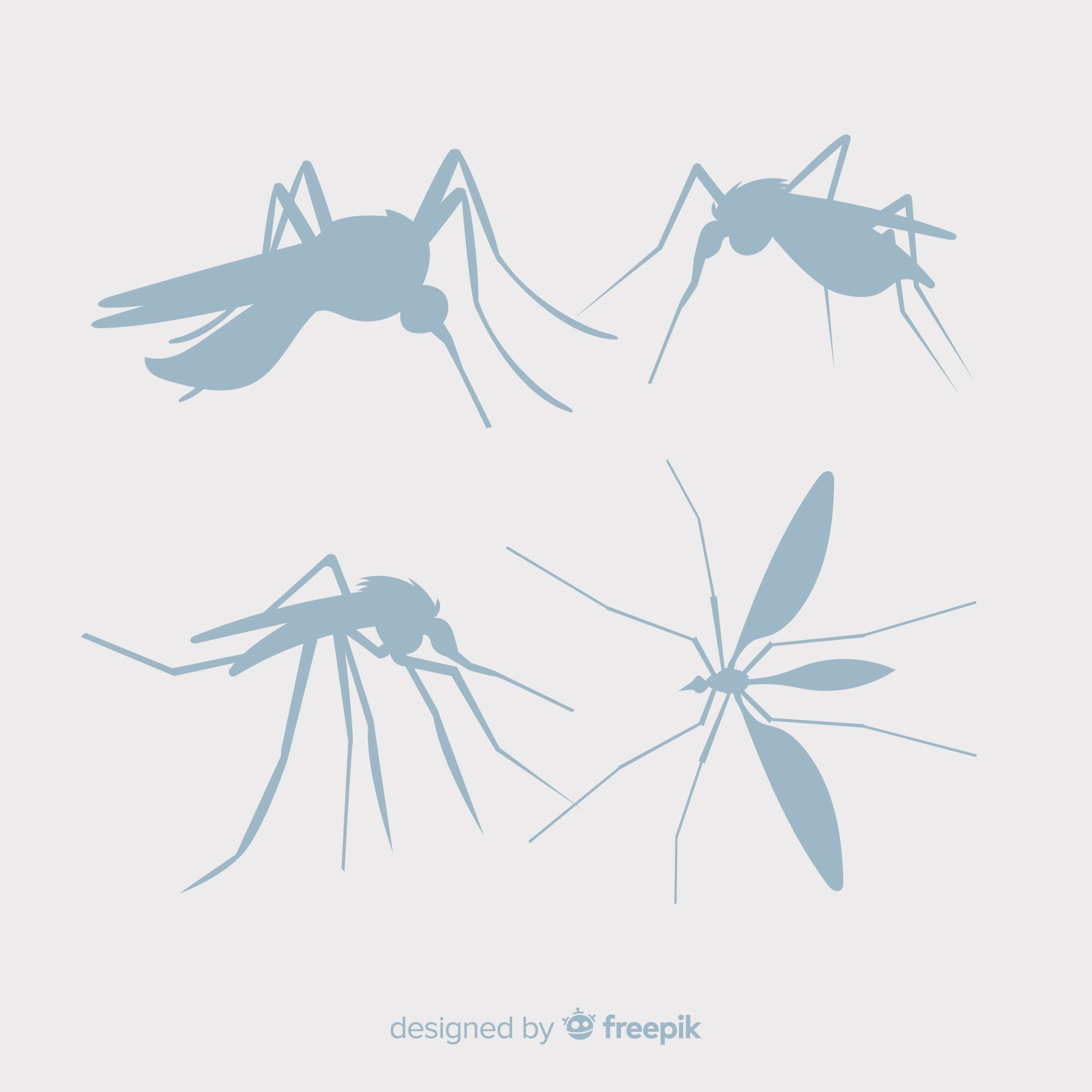Collection of mosquito silhouettes
