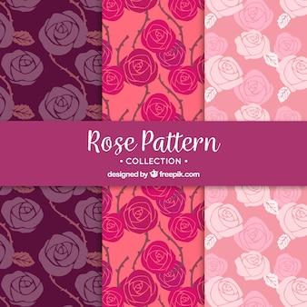 아름다운 장미 패턴의 컬렉션