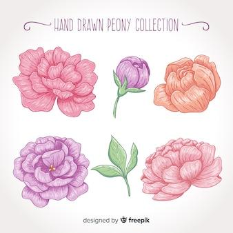 손에 모란 꽃의 컬렉션 그린 스타일