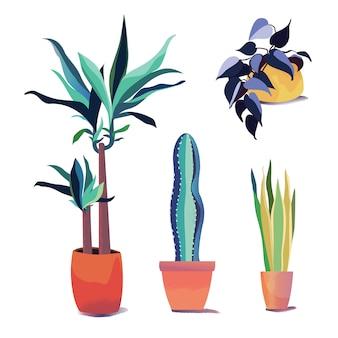 別の鍋、屋内および屋外の風景庭の植木鉢の植物のコレクション。現代ベクトルを白い背景に設定します。室内装飾。