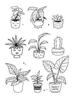 白で隔離される植物のコレクション