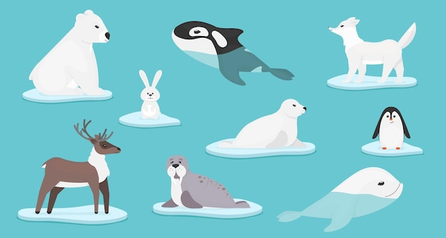 Коллекция полярных животных, изолированных на синем