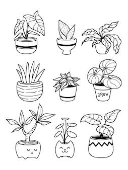 화분에 심은 식물의 컬렉션 흰색 절연