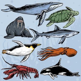 바다 생물의 컬렉션 손으로 그린 스타일