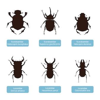 Коллекция силуэт насекомых, животных вектор