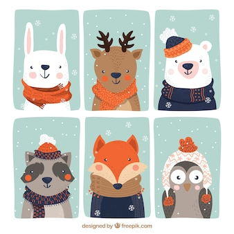 Collection of six beautiful animals with winter clothes