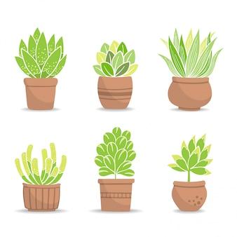焼きたての粘土の植木鉢に小さな緑の茂みのコレクション。鉢植え;図。