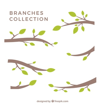 Collection of Stylized Branch Silhouettes