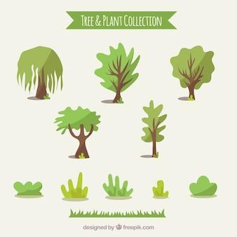 Коллекция деревьев и кустарников Бесплатные векторы