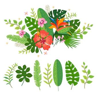 열대 꽃의 수집