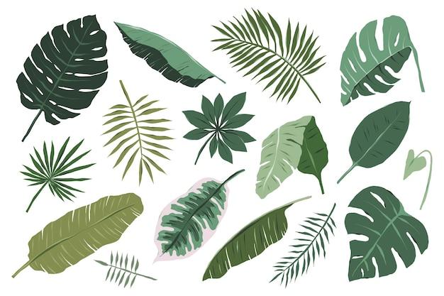 Коллекция различных иллюстраций тропических листьев на белом фоне
