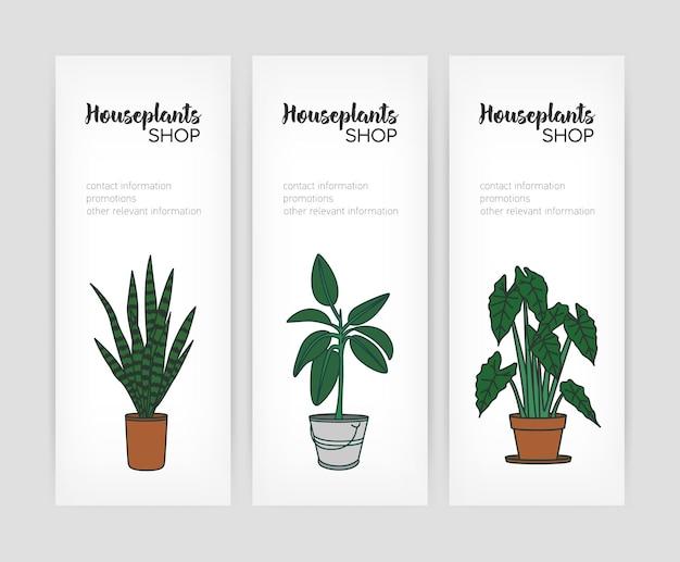 화분에서 성장하는 식물을 가진 수직 배너 템플릿 모음