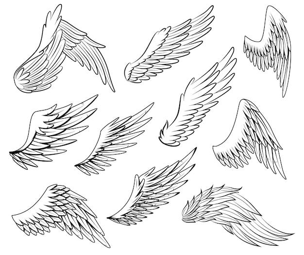 빈티지 전령 날개 컬렉션