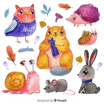 수채화 숲 동물의 컬렉션