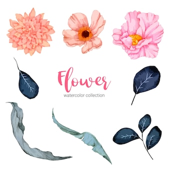 Коллекция акварельных иллюстраций красивый цветок