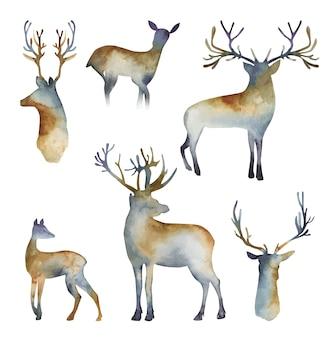 白い背景の上の鹿の手描きの孤立したイラストの水彩シルエットのコレクション