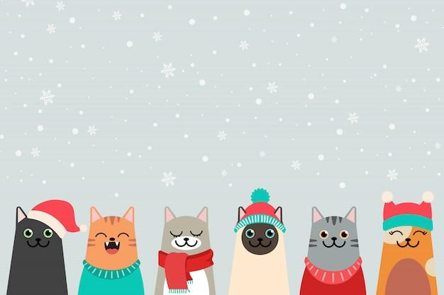 Коллекция зимних кошек