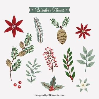 Коллекция зимних цветов в стиле винтаж